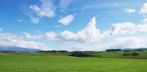 夏休み北海道家族旅行を子供とレンタカーなしで楽しみました