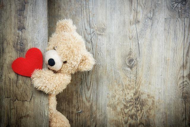 期待と不安を抱く熊