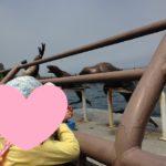 子供と小樽に行くなら海!『おたる水族館』をおススメする8つの理由