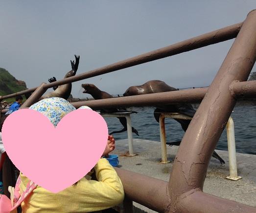 海獣を間近にみる子供たち