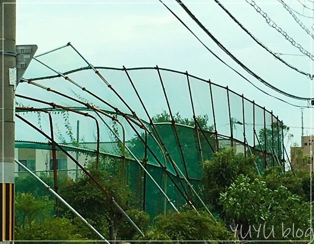 台風21号、大阪で停電3日間を経験。こんな風に過ごしていました。