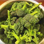 毎日ブロッコリーを食べる我が家の作り置きレシピ3種類