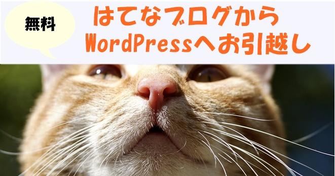はてなブログからワードプレスへ移行!羽田空港サーバーさんへ依頼