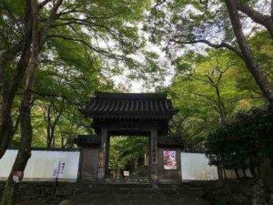 牛滝山大威徳寺の紅葉は大阪で一番人気!アクセスや牛滝山の滝などをご紹介