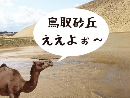 鳥取砂丘への観光は子連れでも楽しめた!施設や過ごし方をご紹介