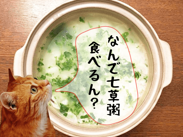 春の七草粥