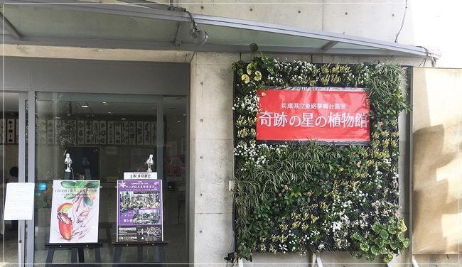 「奇跡の星の植物館」の入り口